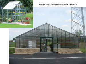 Which Size Greenhouse is Perfect to Start