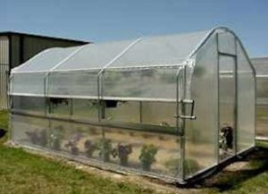 Polyfilm Greenhouse with Roll up Side Curtains